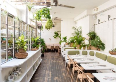 Plant rental for restaurants